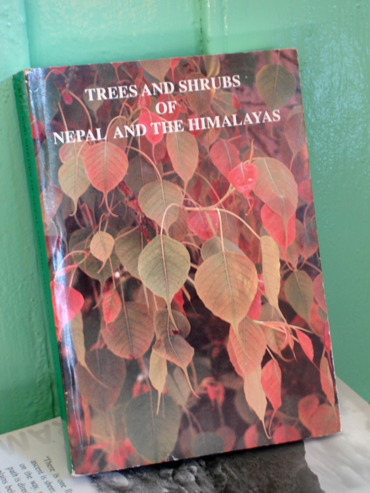 Trees & Shrubs of Nepal & the Himalayas