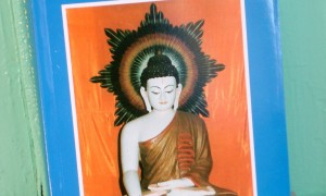 Holy Places of Buddhism in Nepal & India