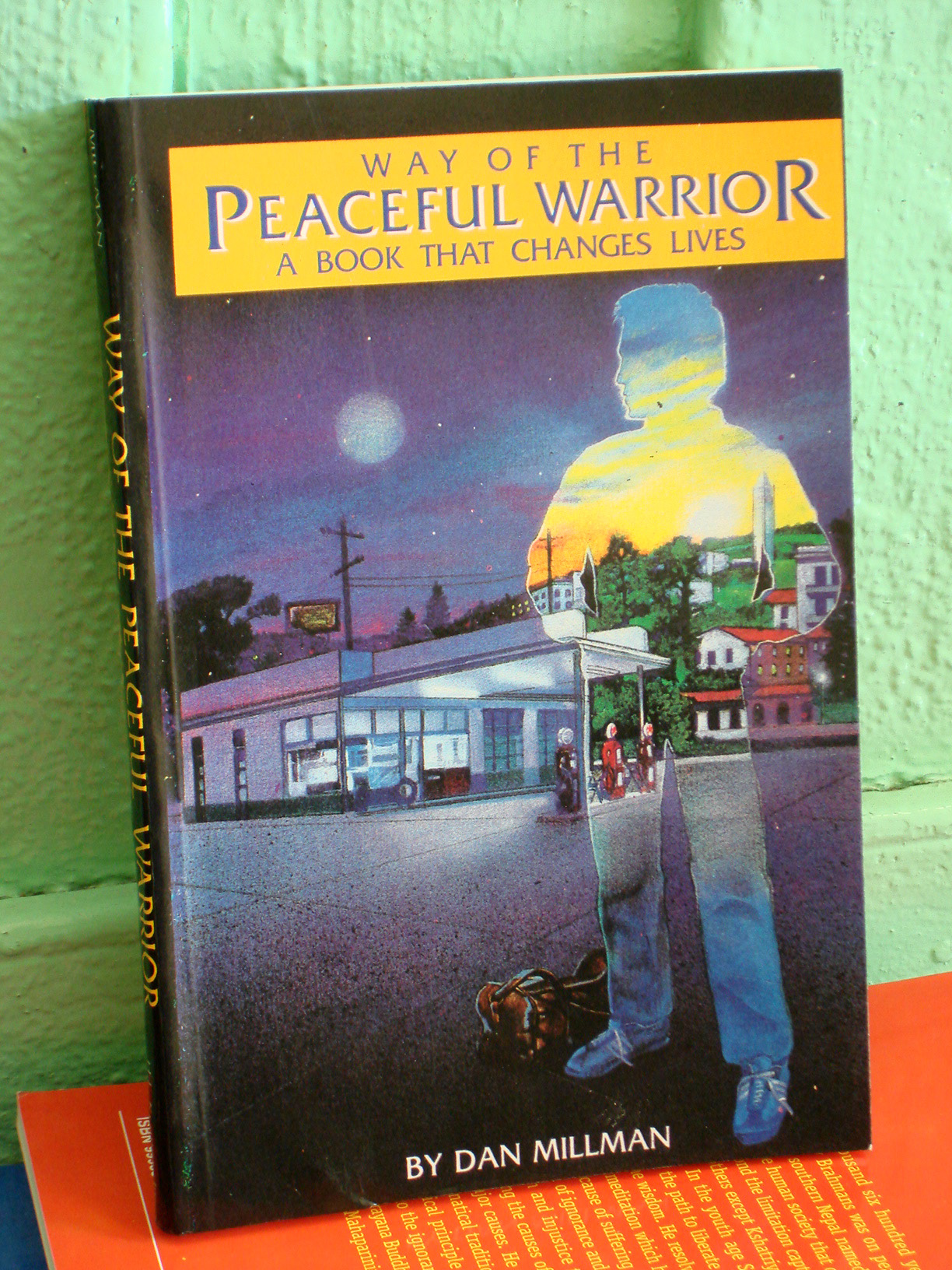 Way of the Peaceful Warrior (***OUT of STOCK***)